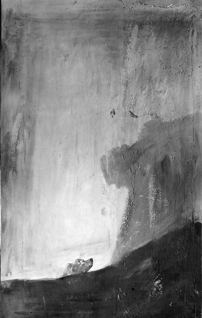 Fotografia de Laurent do quadro El perro de Goya